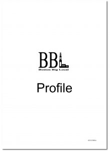 Boston Community Profile_Page_01