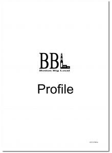Boston Community Profile_Page_01